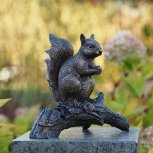 salg af Squirrel on branch