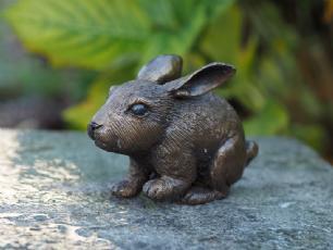 salg af Lille kanin
