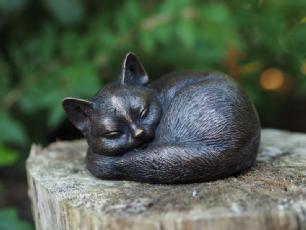 salg af Kat som sover
