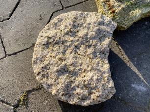 salg af Bedsten hælfacon gul granit
