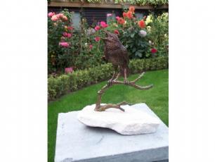 salg af Bird on rock