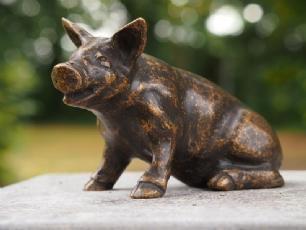 salg af Small pig