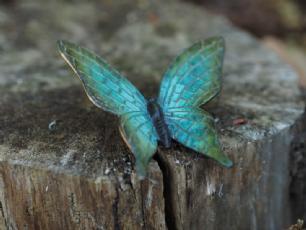 salg af Grøn/blå sommerfugl
