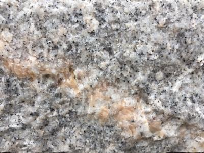 Kantsten palisadesten grå granit