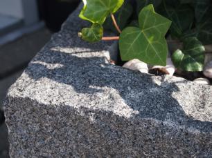 salg af Plantekumme gråsort granit